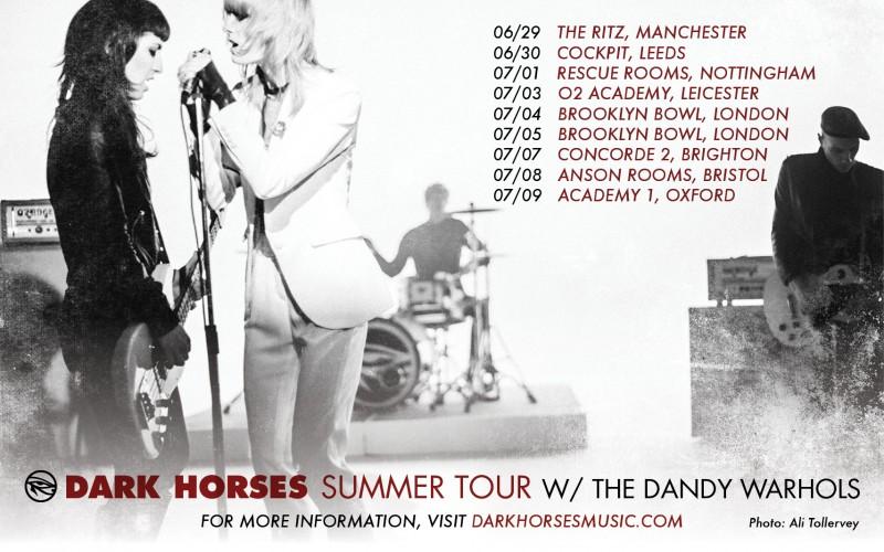 DH DW tour poster v1